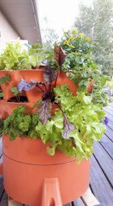 Gardentower2 for seniors care home